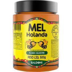 Mel de Abelha Flores Silvestres Holanda 500g